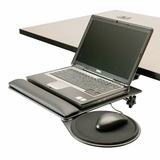 Notebook Stand w/Mouse Tray #LPT-TD