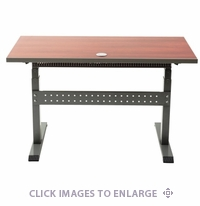 Ergonomic Home Adjustable Desk 24Dx48W