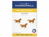 20 lb. Fore Multi-Purpose A4 Paper by Hammermill� - Pre-Punched (Case)