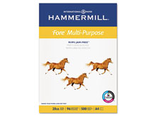 20 lb. Fore Multi-Purpose A4 Paper by Hammermill� - Pre-Punched (Ream)