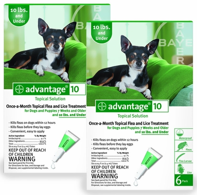 12 MONTH Advantage Flea Control Green: For Dogs under 10lbs.