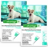 12 MONTH Advantage Flea Control Teal: For Dogs 11-20lbs.