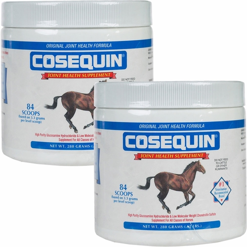 2 Pack Cosequin� EQUINE Powder Concentrate (560 gm)