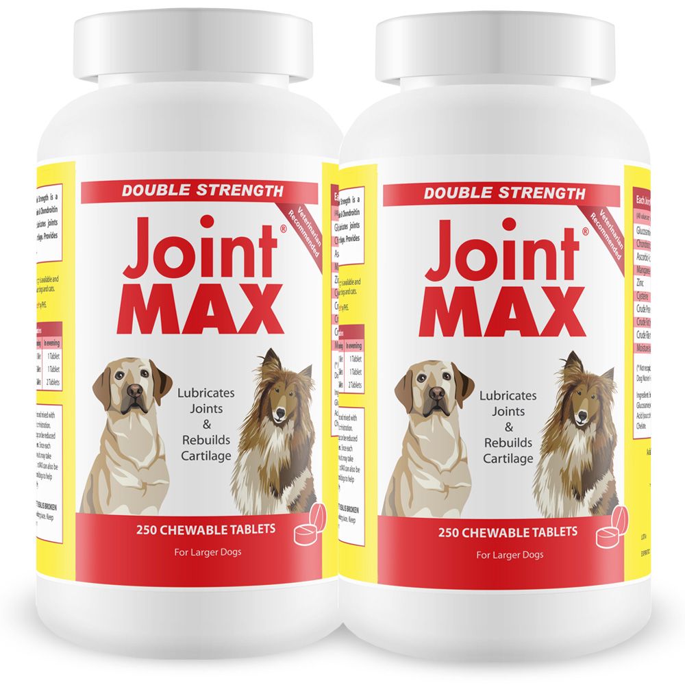 2-PACK Joint MAX® Double Strength (500 Chewable Tablets)