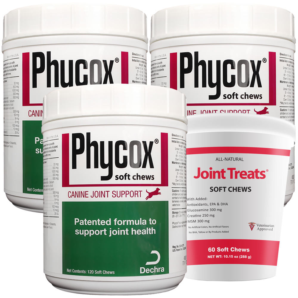 3-PACK PhyCox ONE Soft Chews (360 Soft Chews) + FREE JOINT TREATS!