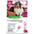 4 MONTH Advantage Flea Control  Red: For Dogs 21-55 lbs.