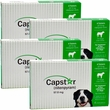 4 PACK CAPSTAR Green for Dogs over 25 lbs (24 tablets)