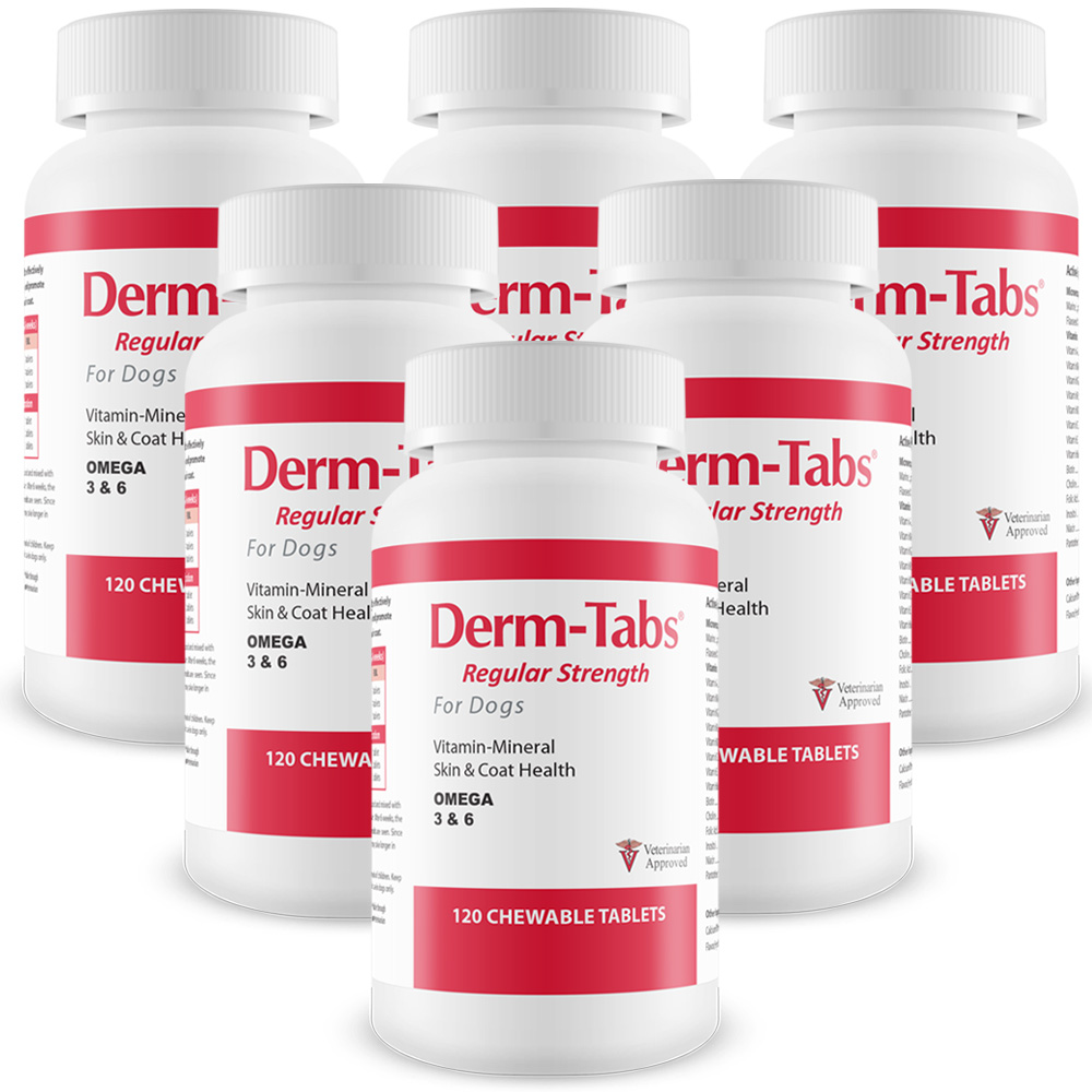 6-PACK Derm-Tabs Regular Strength for Dogs (720 Chewable Tablets)