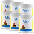 6-PACK Felisyl Immune System Support (21 oz)