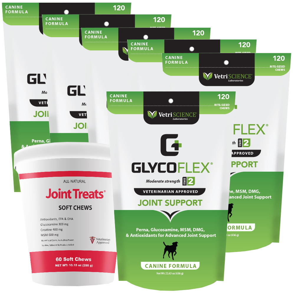6-PACK GlycoFlex 2 (720 Soft Chews) + FREE Joint Treats!