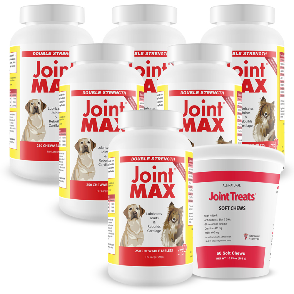 6-PACK Joint MAX® Double Strength (1500 Chewable Tablets) + FREE Joint Treats®