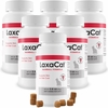 6-PACK LaxaCat™ Hairball Remedy (360 Soft Chews)