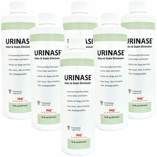 6-PACK URINASE™ Odor & Stain Eliminator (96 fl oz)
