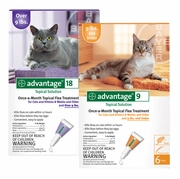 advantage for cats, fleas on cats, flea medicine for cats