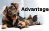Advantage Flea Control for Dogs & Cats
