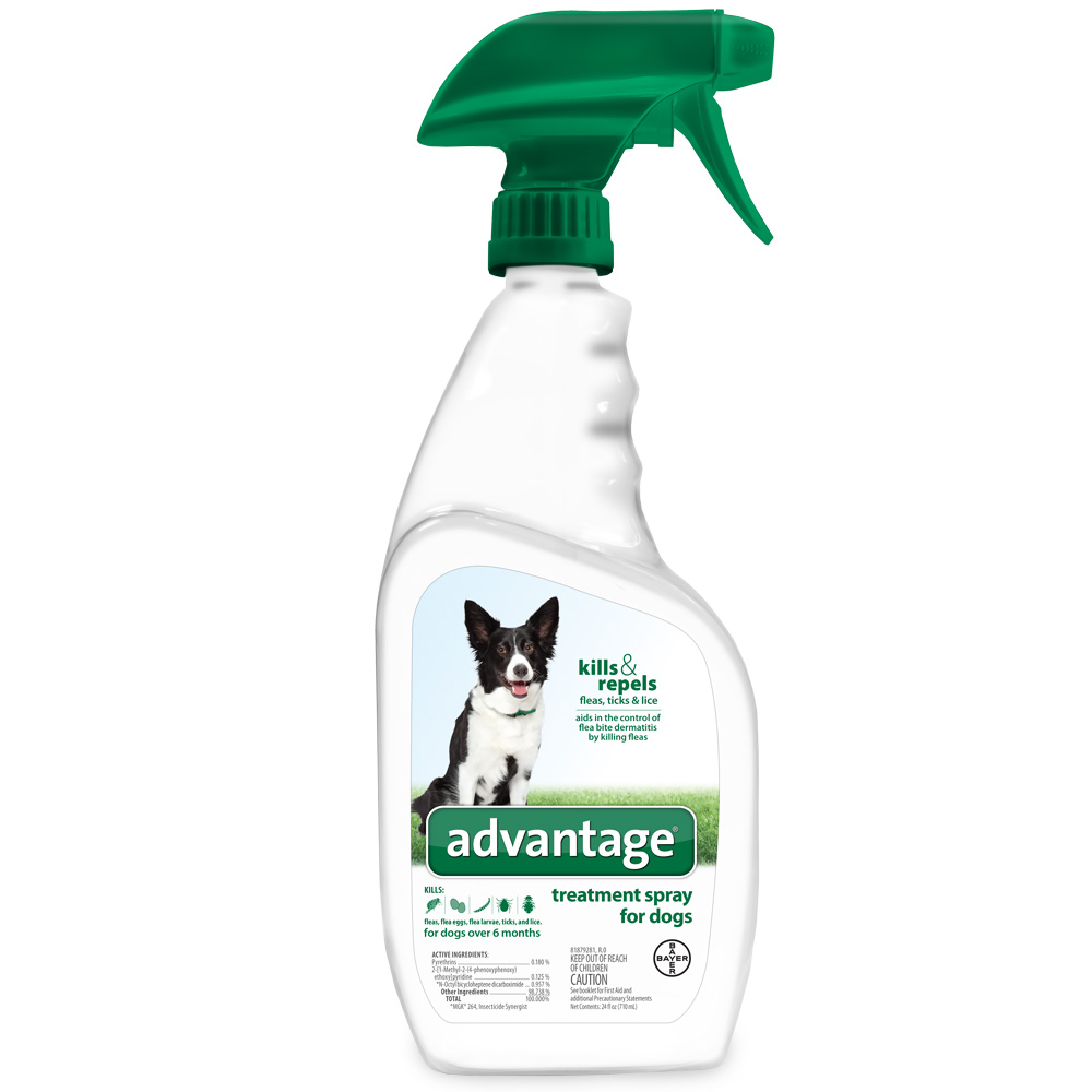 Advantage Treatment Shampoo & Spray for Dogs & Cats