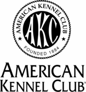 AKC American Kennel Club