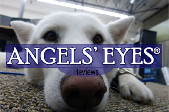 Angels� Eyes for Dogs Reviews