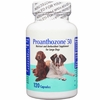 Animal Health Options - Proanthozone