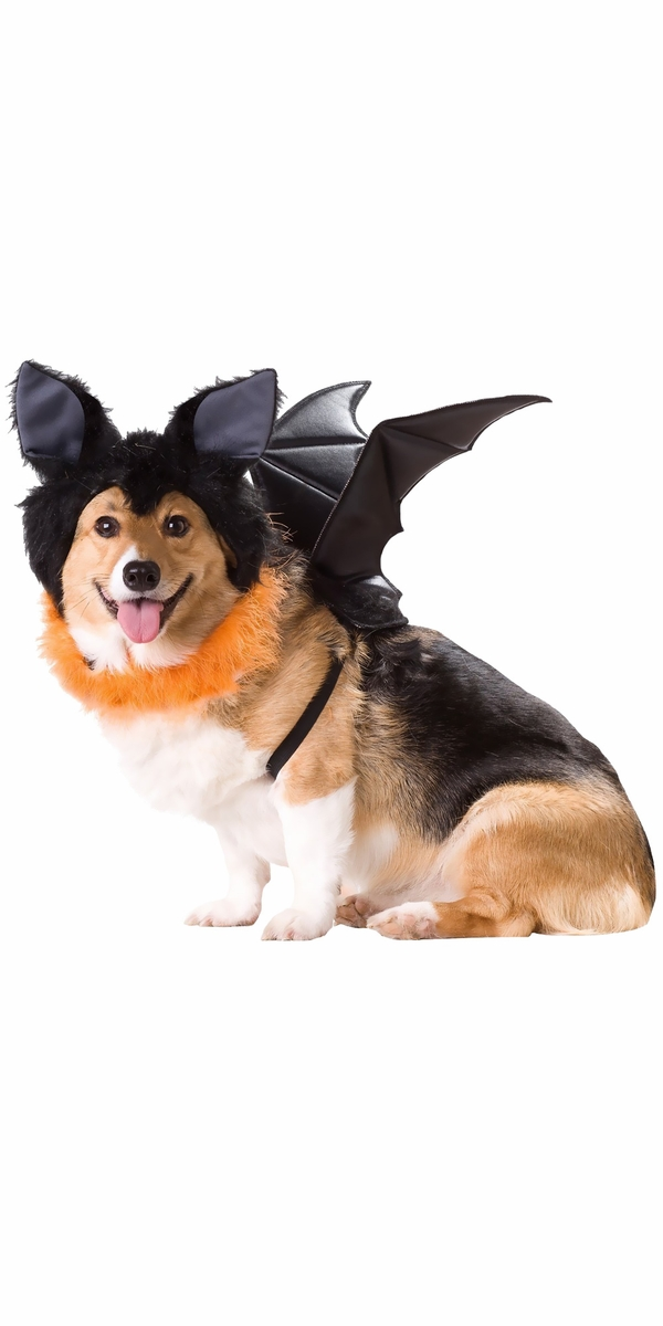 Animal Planet Bat Dog Costume - Large
