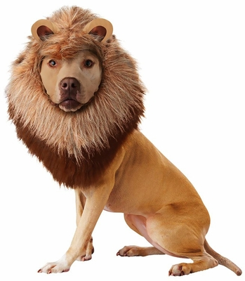 Animal Planet Lion Dog Costume - X-Small