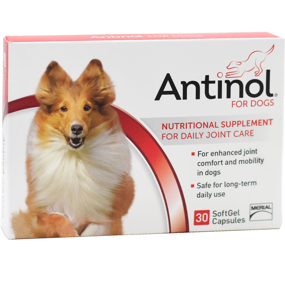 Antinol Daily Joint Care for Dogs (30 count)