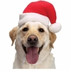 Aria Santa Hat (Large)