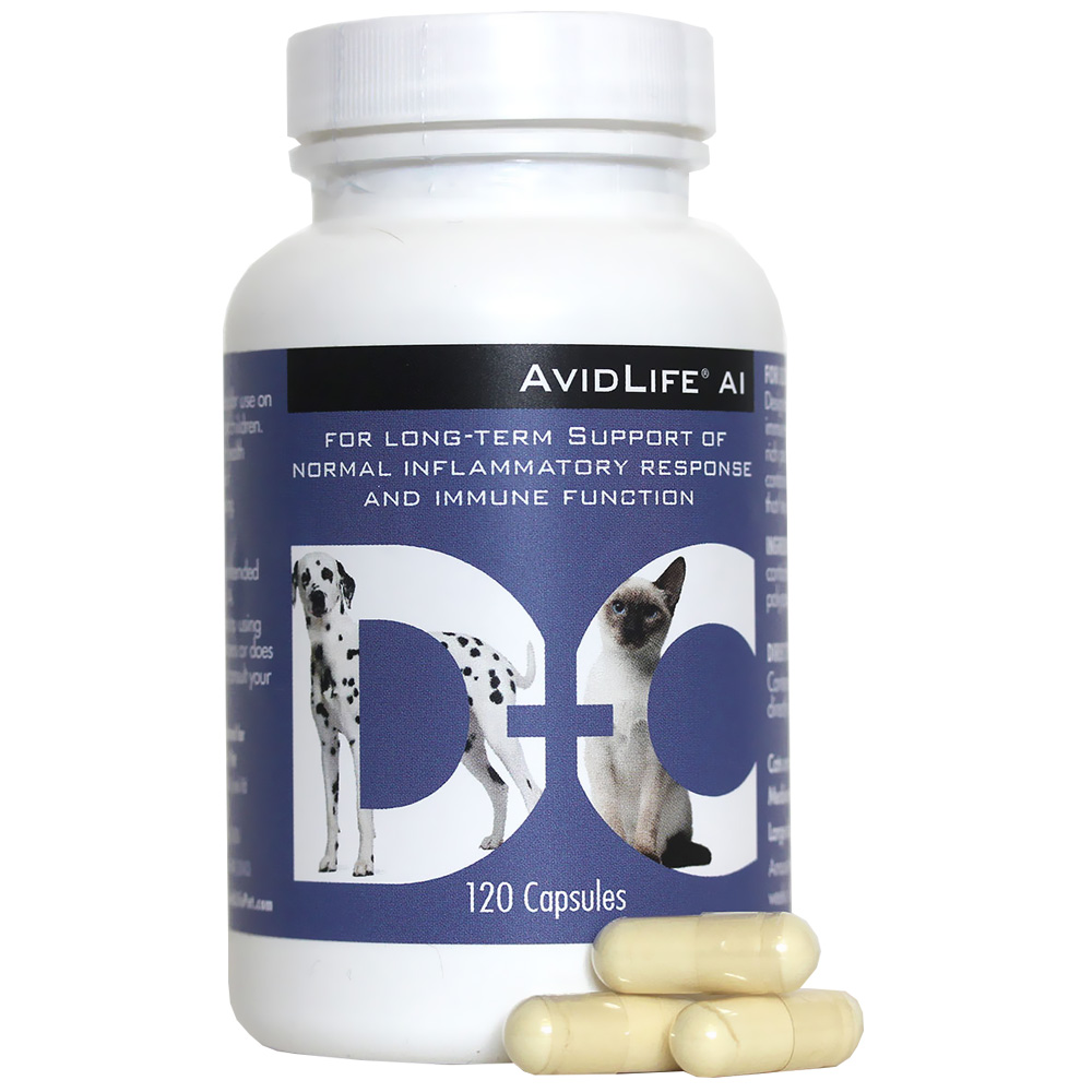 AvidLife AI - Inflammation Supports (120 Capsules)
