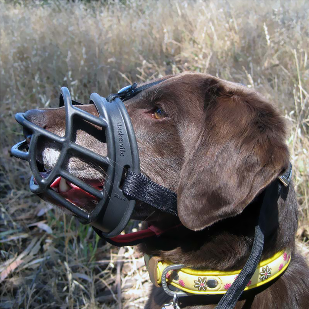 Why The Baskerville Ultra Muzzle Is One Of The Best Dog ...