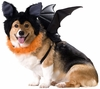 Bat Dog Costume