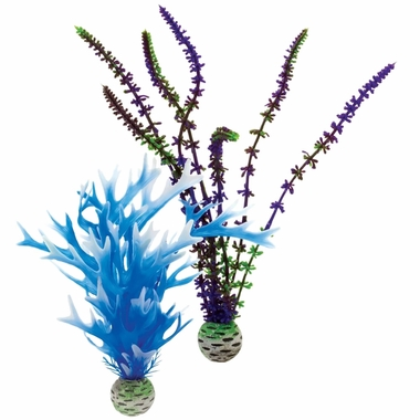 Biorb Easy Plant Blue/Purple Pack Medium (2 plants)