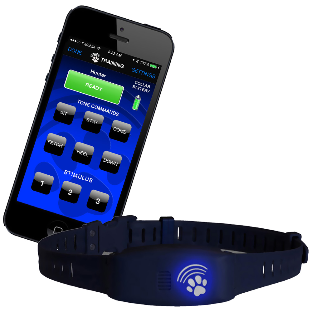 Bluefang 2 in 1 Remote trainer & Bark Control Collar