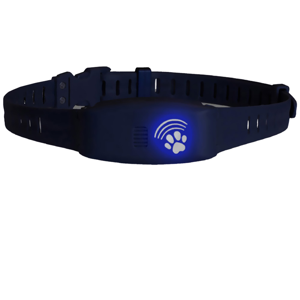 Bluefang 3 in 1 Elecronic Fence, Remote Trainer & Bark Collar