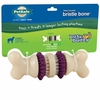 Busy Buddy Bristle Bone (LARGE)