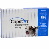 Capstar Flea Control for Dogs & Cats