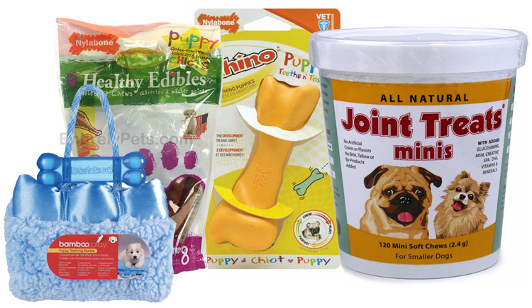 Care Supplies for Puppy