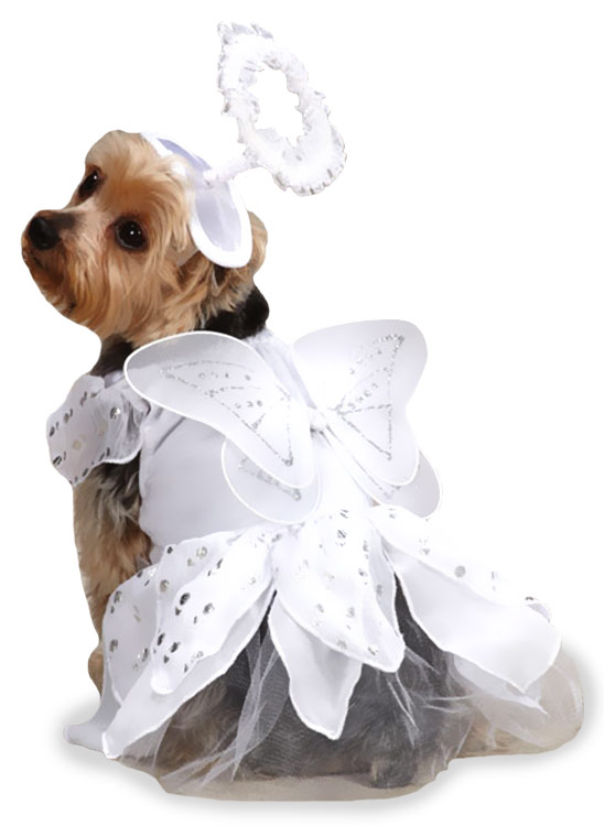 Casual Canine Angel Paws Costume - XSMALL