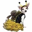 Casual Canine Bee Mine Costume Yellow - SMALL