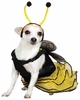 Casual Canine Bee Mine Costume Yellow - XLARGE