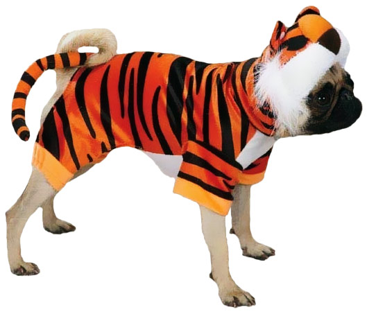Casual Canine Bengal Buddy Costume Orange - LARGE