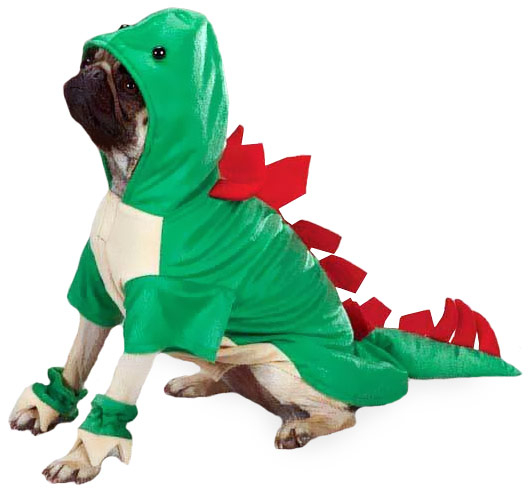 Casual Canine Dogosaurus Costume Green - SMALL