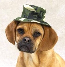 "Casual Canine Green Camo Bucket Hat Medium (6"")"