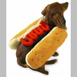 Casual Canine Hot Diggity Dog Costume Ketchup - SMALL