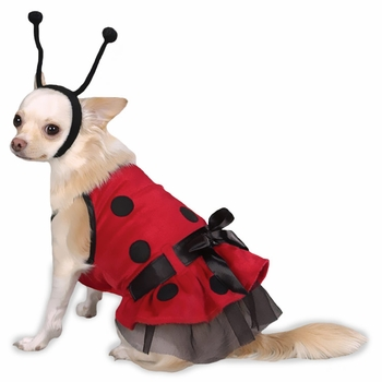 Casual Canine Lady Bug Costume - Large