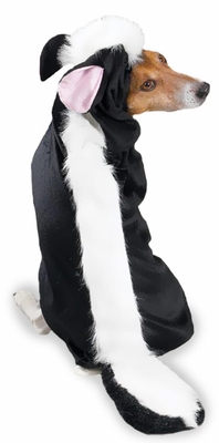 Casual Canine Lil' Stinker Costume - MEDIUM