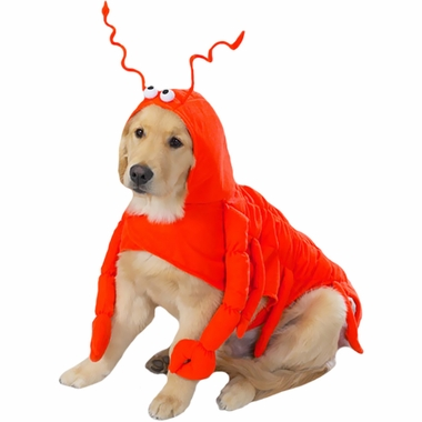Casual Canine Lobster Costume - LARGE