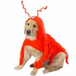 Casual Canine Lobster Costume - MEDIUM
