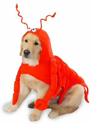 Casual Canine Lobster Costume - XSMALL