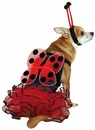 Casual Canine Lucky Bug Costume Red