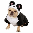Casual Canine Panda Pup Costume - MEDIUM